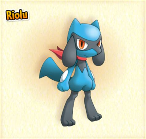 riolu  pokecommunity forums