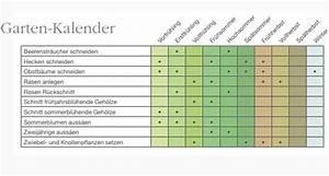 Pflanzen Schneiden Kalender : der ph nologische kalender mein sch ner garten garten pflanzen deko grillen pinterest ~ Orissabook.com Haus und Dekorationen