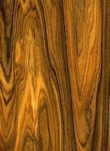 Wood Work Exotic Hardwoods And Veneers PDF Plans