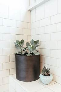 Bathroom, Refresh