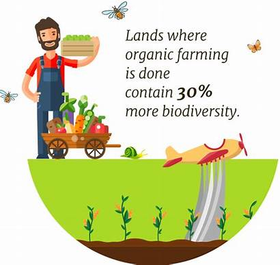 Clipart Farming Organic Transparent Tema Webstockreview Rd