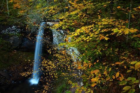 Beautiful West Virginia Waterfalls