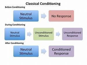 Classical Conditioning - Diagram