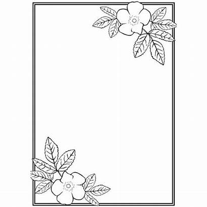 Border Borders Flower Simple Designs Easy Draw