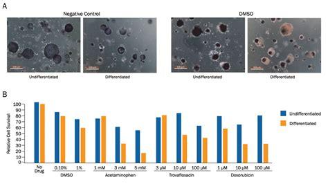 TACS MTT Cell Proliferation Assay 4890-050-K: R&D Systems