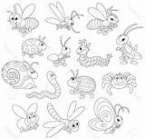 Bug Pill Drawing Cartoon Line Getdrawings sketch template