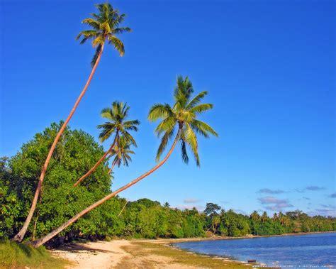 vanuatu beaches style  beach