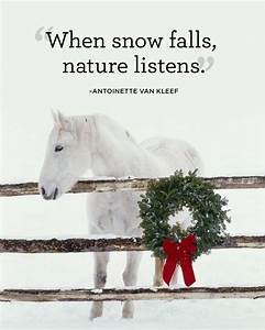 15 Best Winter Quotes - Snow Quotes You'll Love