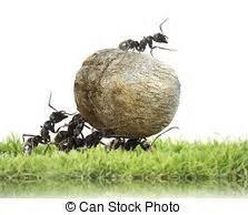 Ameisen In Der Wand : ameisen stock fotos illustrationen und lizenzfreie ameisen bilder seite 2 ~ Frokenaadalensverden.com Haus und Dekorationen