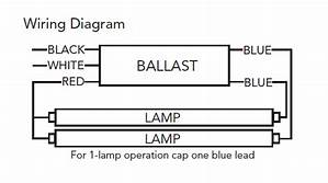17+ 1 Lamp Ballast Wiring Diagram Images
