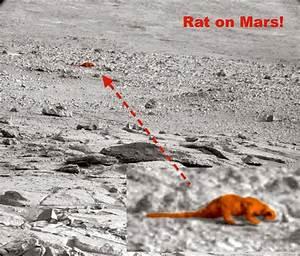 Mars Alien Base - Pics about space