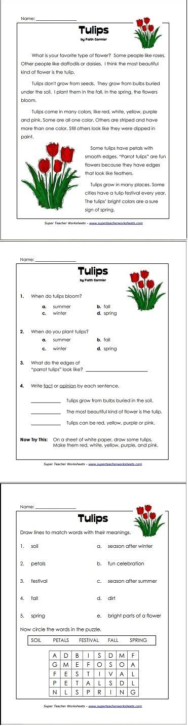a perfect reading comprehension worksheet for springtime reading and writing super teacher