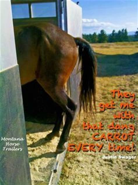 funny horse captions  pinterest funny horse pictures