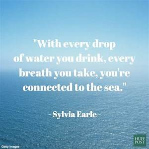 11 Quotes About... Beach Pollution Quotes