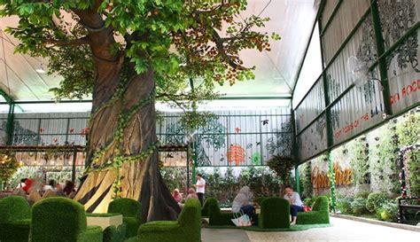 foresthree cafe  suasana hutan  menu sehat