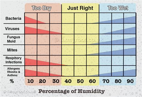 comfortable humidity level how to cure condensation free top 10 tips to a