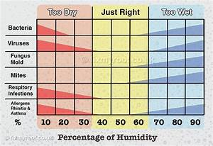 Indoor Outdoor Humidity Chart How To Cure Condensation Free Top 10 Tips To A