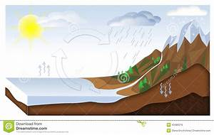 Water Cycle Stock Illustration  Image Of Geography  Circulation