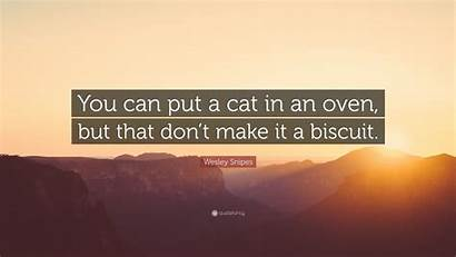 Snipes Wesley Oven Put Cat Don Quotes
