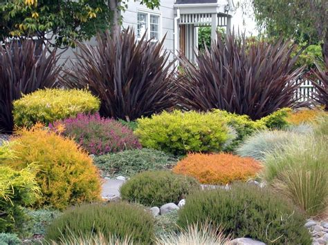 grasses for gardens designs create a beautiful drought resistant front yard