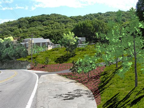 sustainable landscapes architect and design marin san