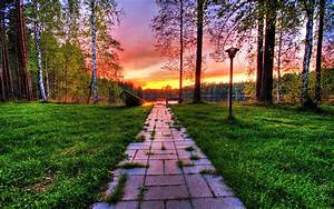 Wonderful, Nature, Background