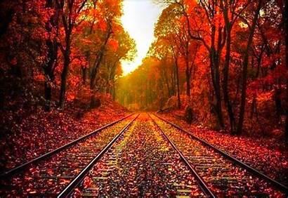 Autumn Wallpapers Desktop Backgrounds