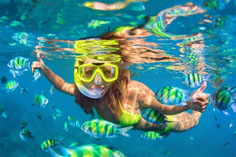 best places to snorkel in the u s hotelcoupons com bloghotelcoupons com blog