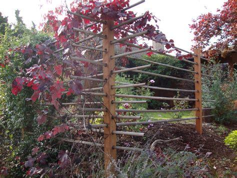 a grape arbor danger garden a fence that doubles as a grape arbor