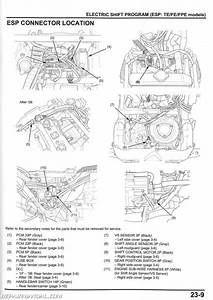 2001 Honda 400ex Service Manual
