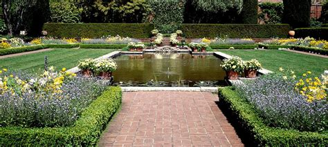 landscaping designs   ideas  landscaping