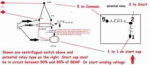 Start Run Wiring Diagram For Century 3hp 1081 Pool  Spa Pump