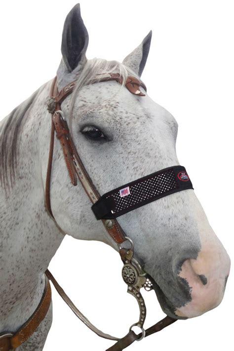 bridle horse bridles