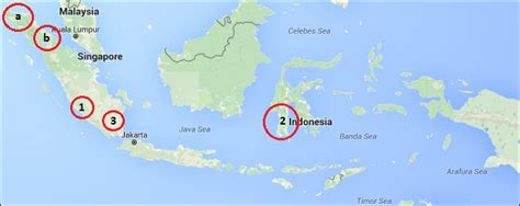coffee  indonesia production export indonesian