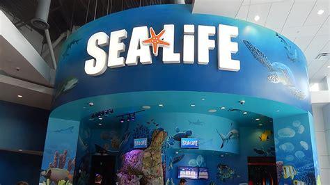 sea life aquarium orlando orlando  hotels packages