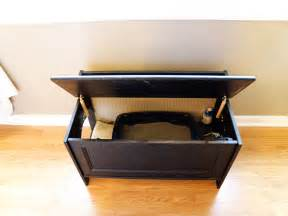 where to put cat litter box 301 moved permanently
