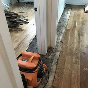 How to repair buckled wood floors 2 hardwood flooring for How to fix buckling hardwood floors