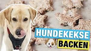 Hundekekse Selbst Backen : hundekekse selber backen mit leberwurst diy hundeleckerlies selber machen youtube ~ Watch28wear.com Haus und Dekorationen