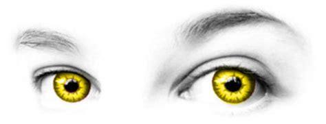 costume contact lenses   spirithalloweencom