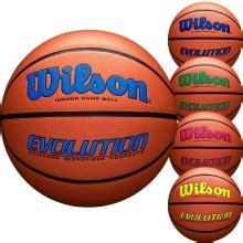 wilson evo nxt  mens official basketball