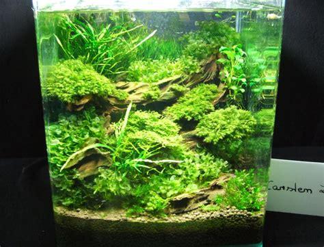 meerwasseraquaristik aquarium knowhow