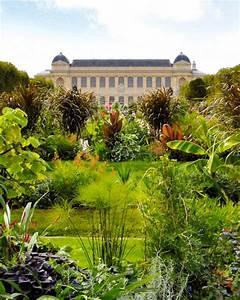 Le Jardin des Plantes - Paris Babyccino Kids: Daily tips