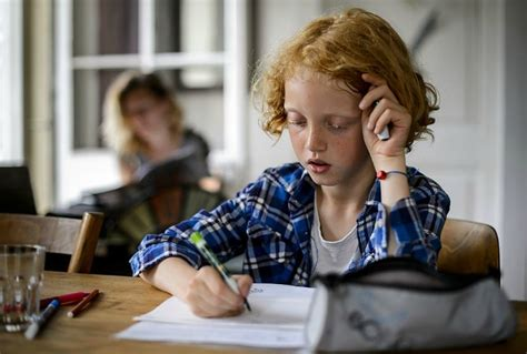 The Biggest Myths About Home Schooling