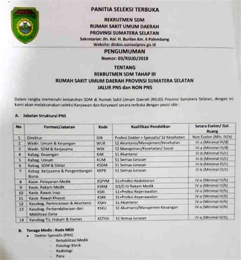 lowongan kerja  pns rsud provinsi sumatera selatan