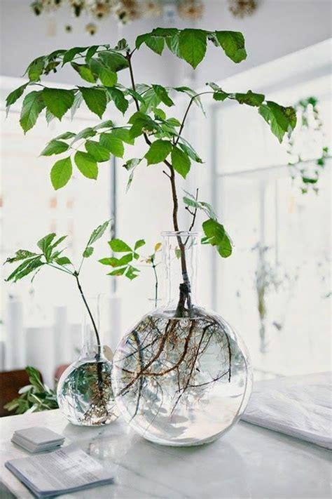 plante cuisine decoration deco salon cuisine ouverte 10 salle de s233jour bien
