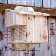 classic cedar squirrel house im nuts  squirrels