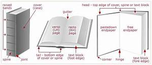 Diagram Of The Different Parts Of A Book