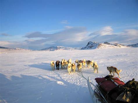 Arktikas