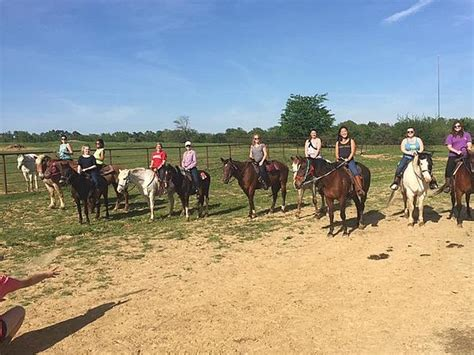 horseback riding tours states united tripstodiscover memphis trail ride