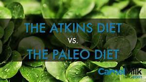 Atkins Vs  Paleo  Comparing Best Diets For Health